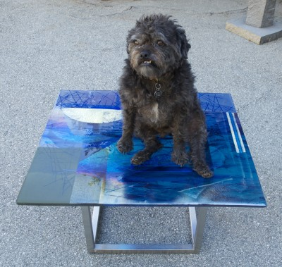 Bentley on glass coffee table